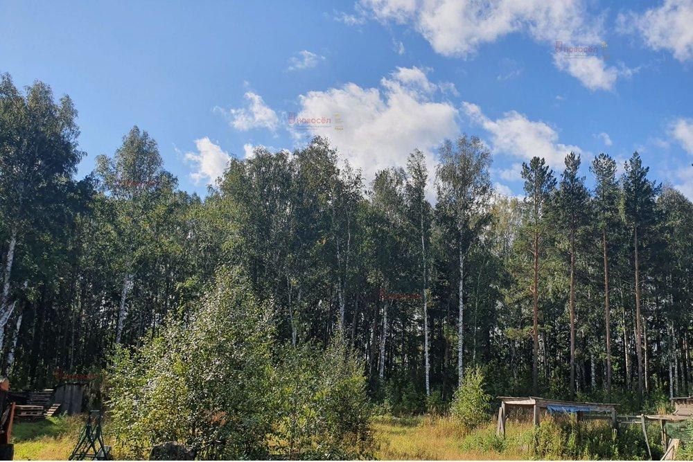 п. Растущий, ул. Лесная, 17 (городской округ Белоярский) - фото земельного участка (2)