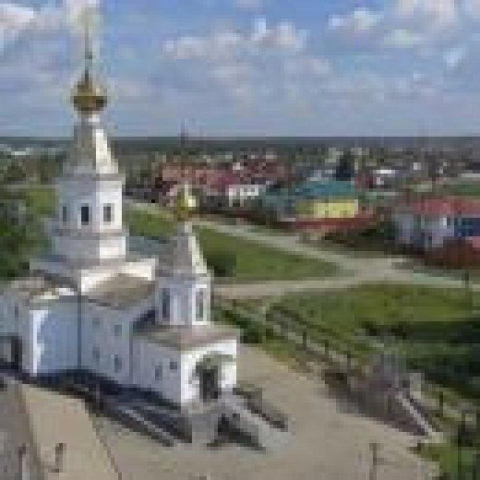с. Балтым, ул. 2-й переулок Энтузиастов, 8 (городской округ Верхняя Пышма) - фото коттеджа (3)