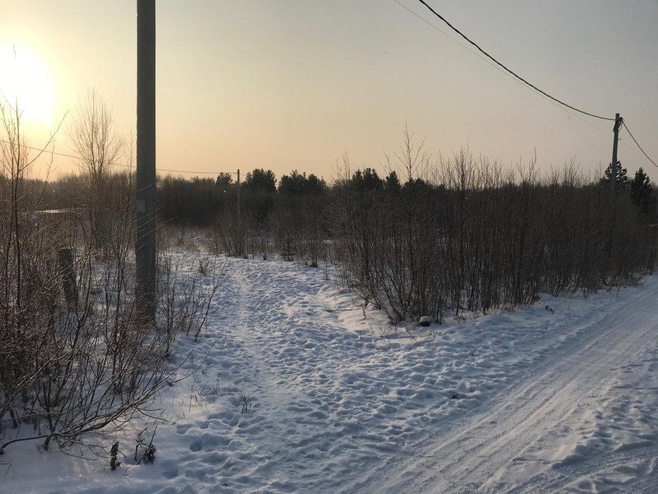 Екатеринбург, к/с Горнощитский, ул. Ельничная (Горный щит) - фото сада (1)