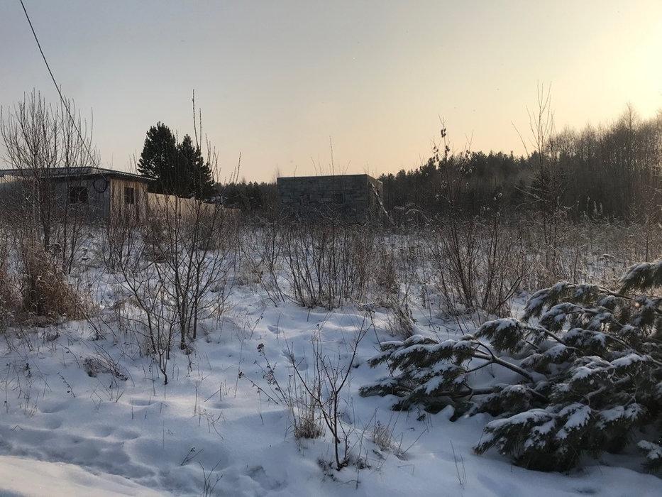 Екатеринбург, к/с Горнощитский, ул. Ельничная (Горный щит) - фото сада (2)