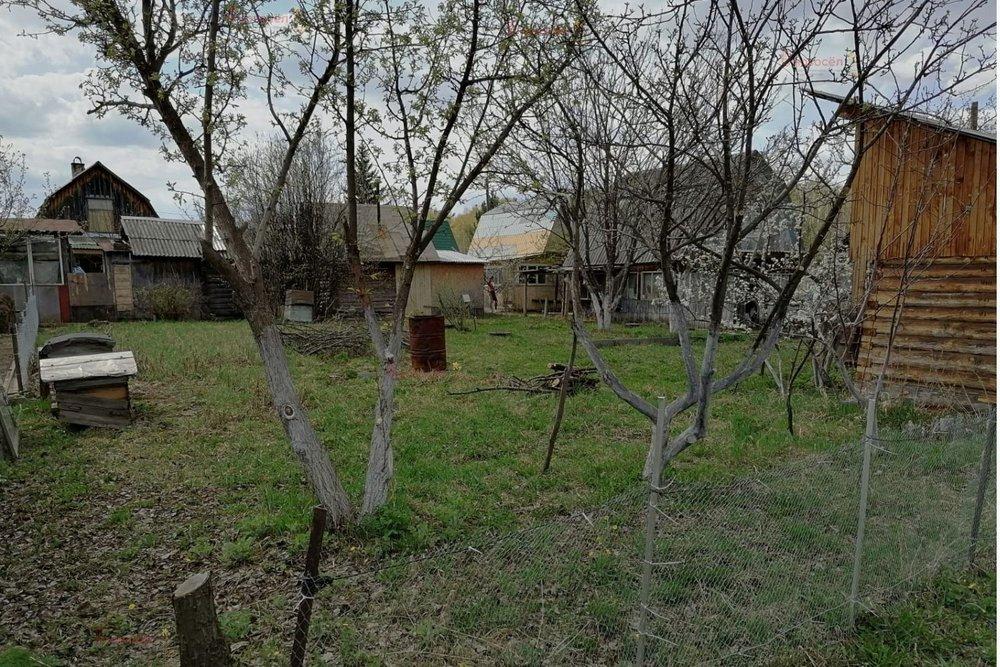 с. Малобрусянское, к/с Черемушка (городской округ Белоярский) - фото сада (4)