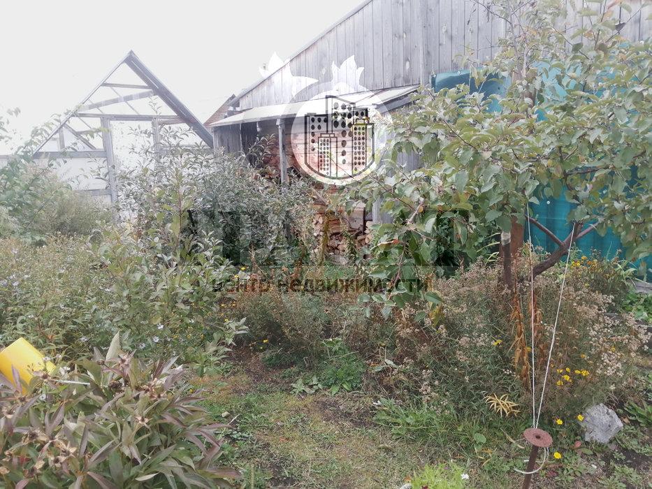 г. Ревда, СОТ Заречный (городской округ Ревда) - фото сада (6)