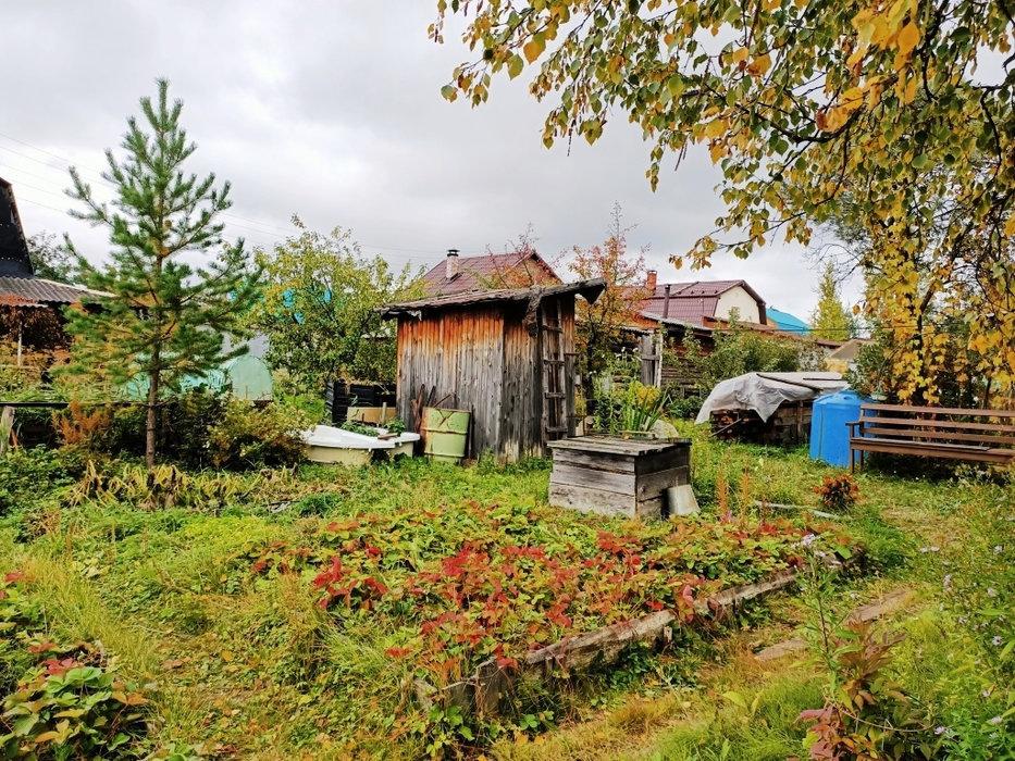Екатеринбург, снт. Свет (Широкая речка) - фото сада (7)