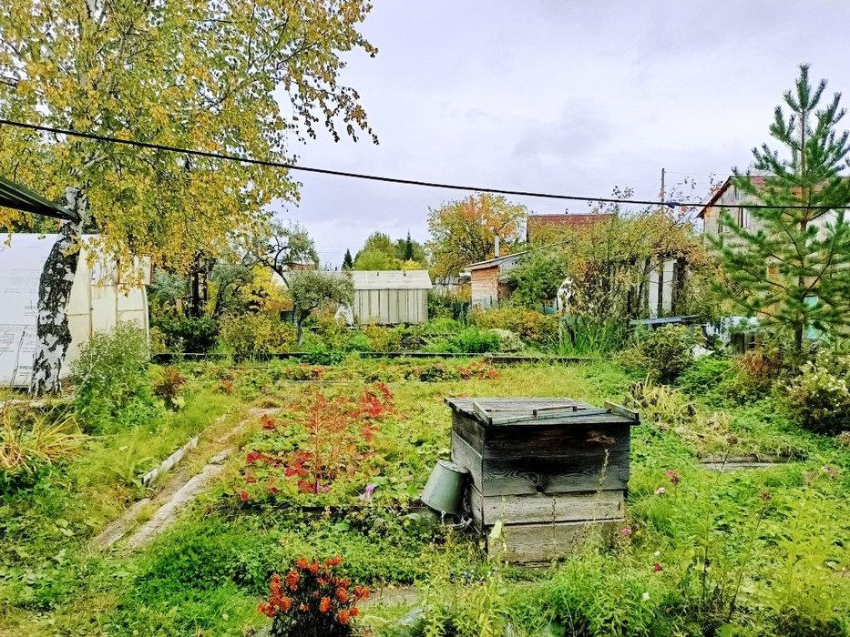 Екатеринбург, снт. Свет (Широкая речка) - фото сада (8)