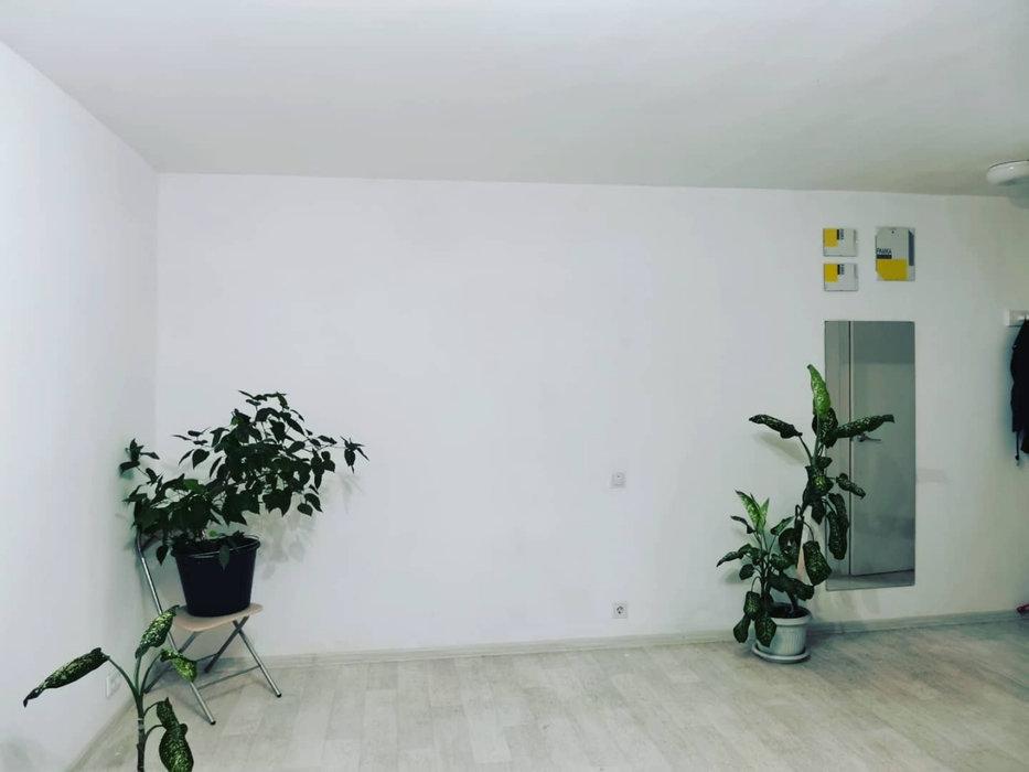 Екатеринбург, ул. Луначарского, 218 (Центр) - фото квартиры (3)