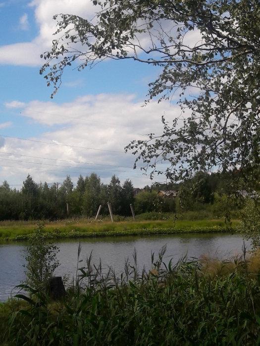 Екатеринбург, ул. Майская, 51 - фото земельного участка (4)