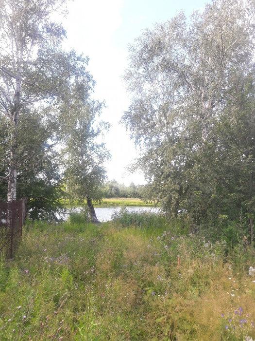 Екатеринбург, ул. Майская, 51 - фото земельного участка (3)