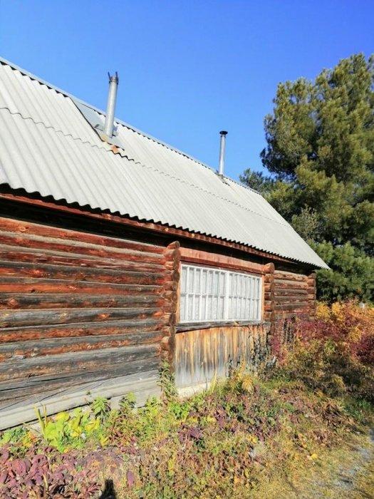 Екатеринбург, к/с Связист-1 (Широкая речка) - фото сада (3)