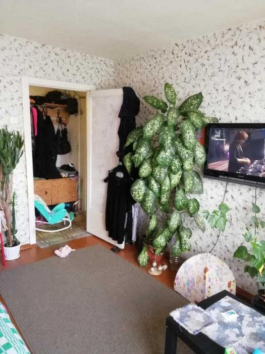 Екатеринбург, ул. Симферопольская, 35 (Вторчермет) - фото квартиры (3)