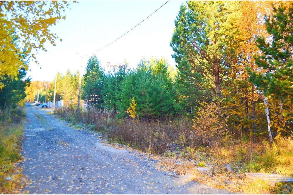 к. п. Лесные тропы (Екатеринбург, с. Горный щит) - фото земельного участка (1)