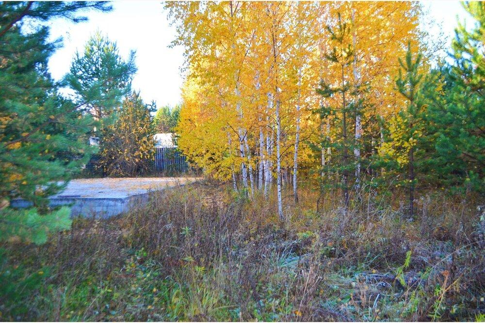 к. п. Лесные тропы (Екатеринбург, с. Горный щит) - фото земельного участка (3)
