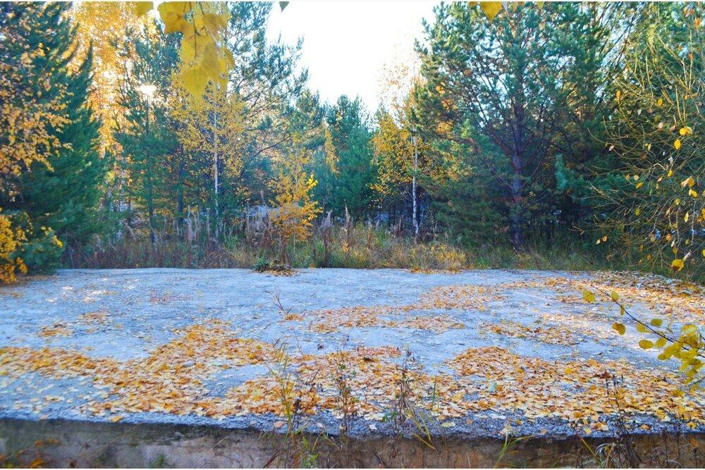 к. п. Лесные тропы (Екатеринбург, с. Горный щит) - фото земельного участка (4)
