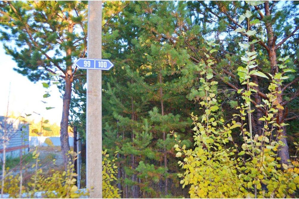 к. п. Лесные тропы (Екатеринбург, с. Горный щит) - фото земельного участка (5)