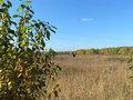Продажа земельного участка: Екатеринбург, ул. автодорога Горный Щит - Верхнемакарово, 2-й километр - Фото 4
