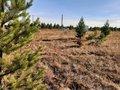 Продажа земельного участка: п. Становая (городской округ Березовский) - Фото 2
