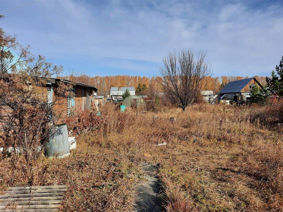 СНТ Ветеран (городской округ Верхняя Пышма) - фото сада (2)