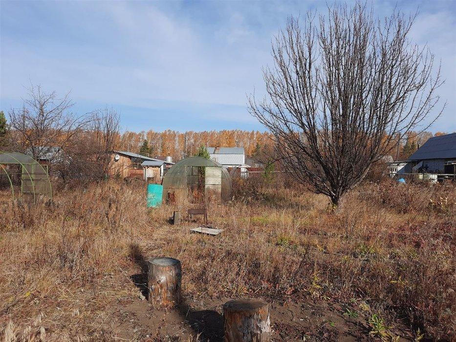 СНТ Ветеран (городской округ Верхняя Пышма) - фото сада (5)