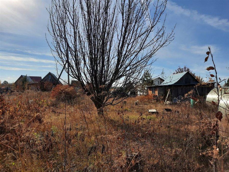 СНТ Ветеран (городской округ Верхняя Пышма) - фото сада (7)
