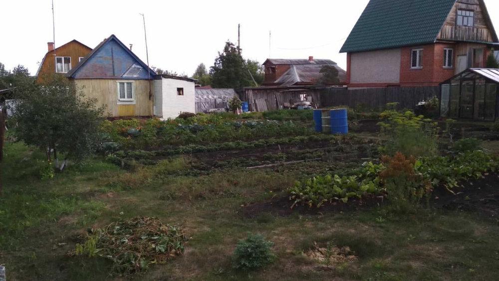д. Гилева, к/с Сплав (городской округ Белоярский) - фото сада (4)