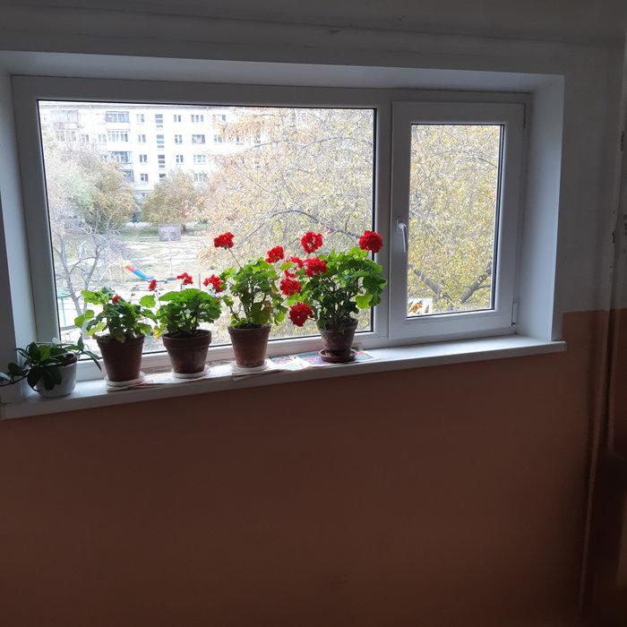 Екатеринбург, ул. Чайковского, 79 (Автовокзал) - фото квартиры (5)