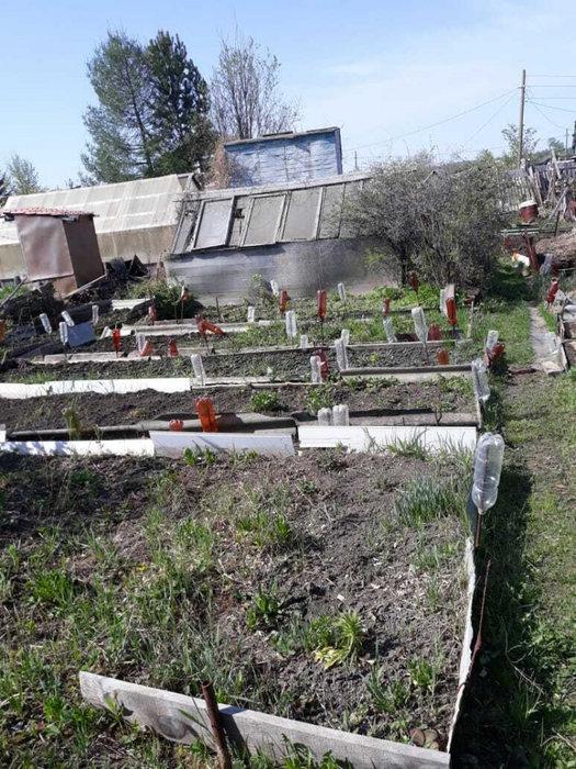 г. Ревда, СОТ Восток (городской округ Ревда) - фото сада (5)