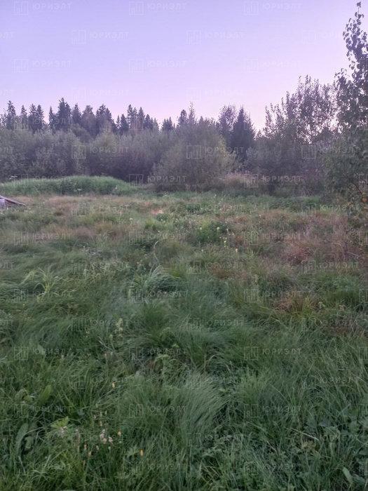 п. Анатольская, Уралхимпласт 3 (городской округ Горноуральский) - фото сада (1)