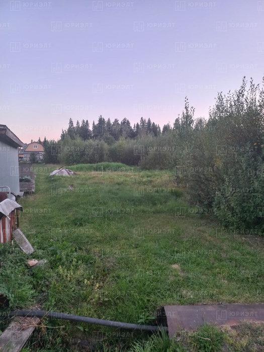 п. Анатольская, Уралхимпласт 3 (городской округ Горноуральский) - фото сада (2)