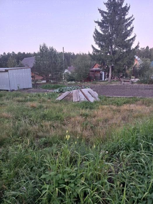 п. Анатольская, Уралхимпласт 3 (городской округ Горноуральский) - фото сада (4)
