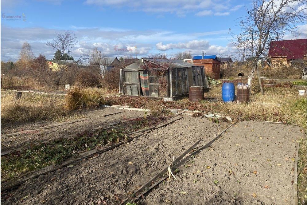 п. Кирпичный, СНТ Южный (городской округ Среднеуральск) - фото сада (6)