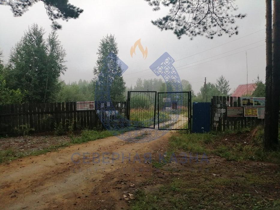 СНТ Меркурий, к/с   (городской округ Березовский) - фото сада (1)