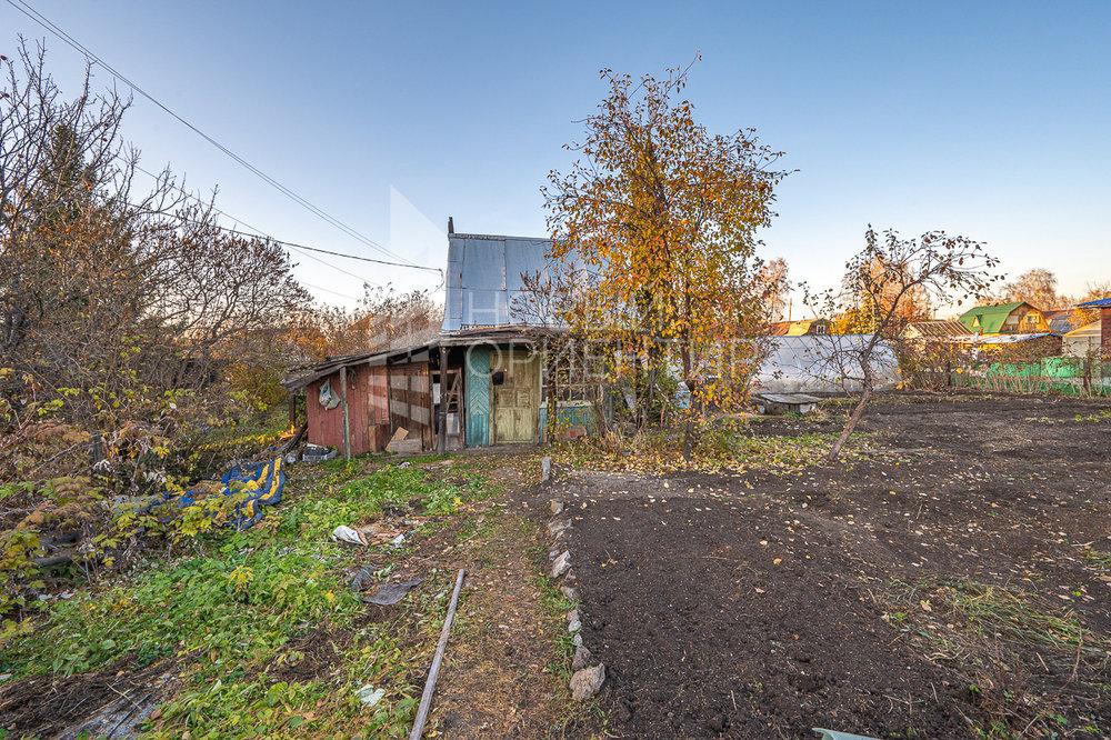Екатеринбург, снт Шахтер - фото сада (2)