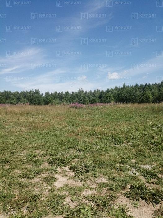 г. Нижний Тагил, ул. 6-я Лазурная, 3 (городской округ Нижний Тагил) - фото земельного участка (3)