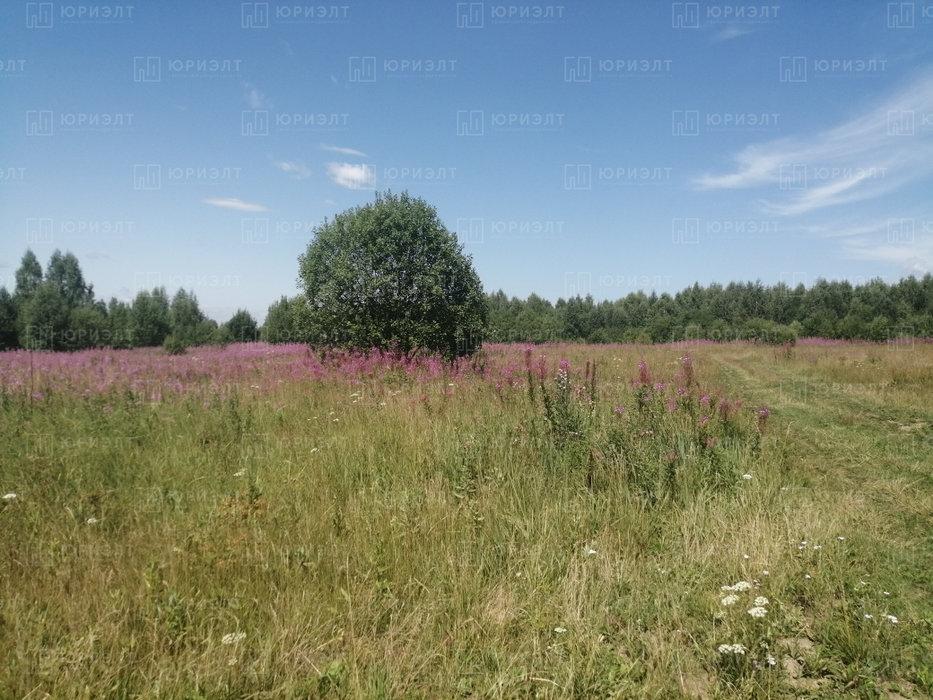 г. Нижний Тагил, ул. 6-я Лазурная, 3 (городской округ Нижний Тагил) - фото земельного участка (4)