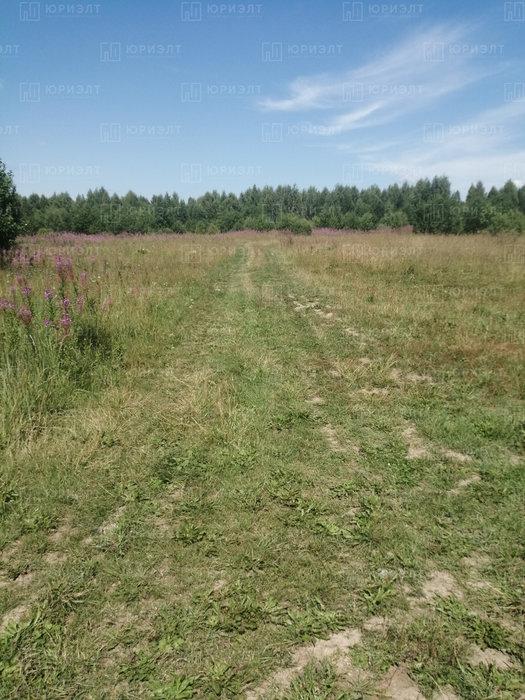 г. Нижний Тагил, ул. 6-я Лазурная, 3 (городской округ Нижний Тагил) - фото земельного участка (5)