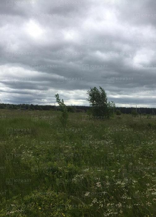 г. Нижний Тагил, ул. 6-я Лазурная, 3 (городской округ Нижний Тагил) - фото земельного участка (6)