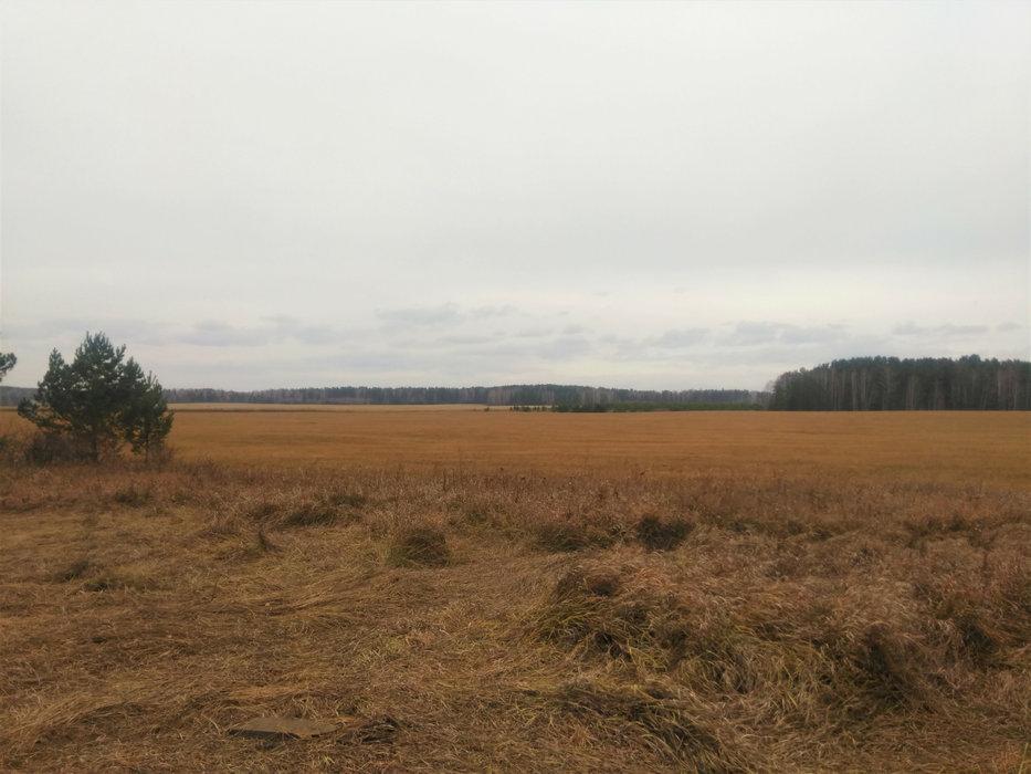 с. Арамашка (городской округ Режевской) - фото земельного участка (2)