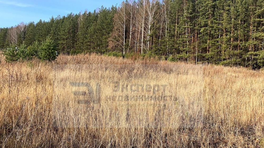 к.п. Шишкино, ул. Кедровая, 38 (городской округ Березовский) - фото земельного участка (2)