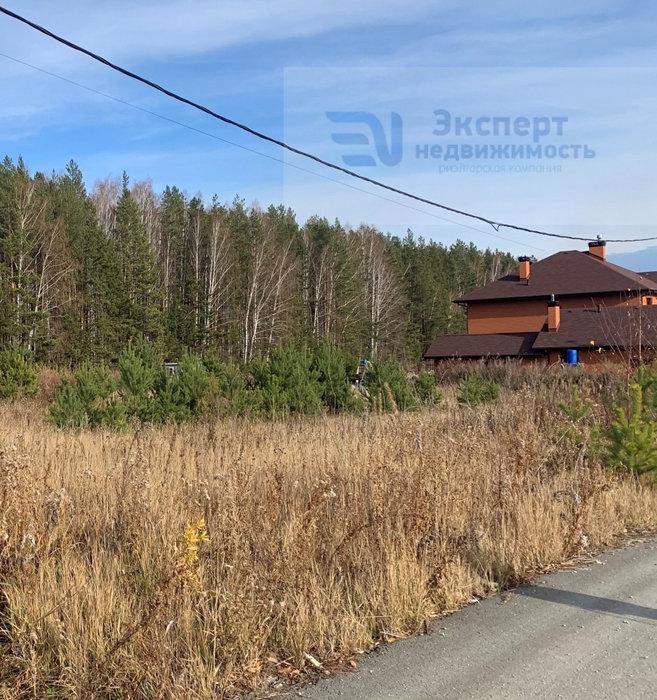 к.п. Шишкино, ул. Кедровая, 36 (городской округ Березовский) - фото земельного участка (1)