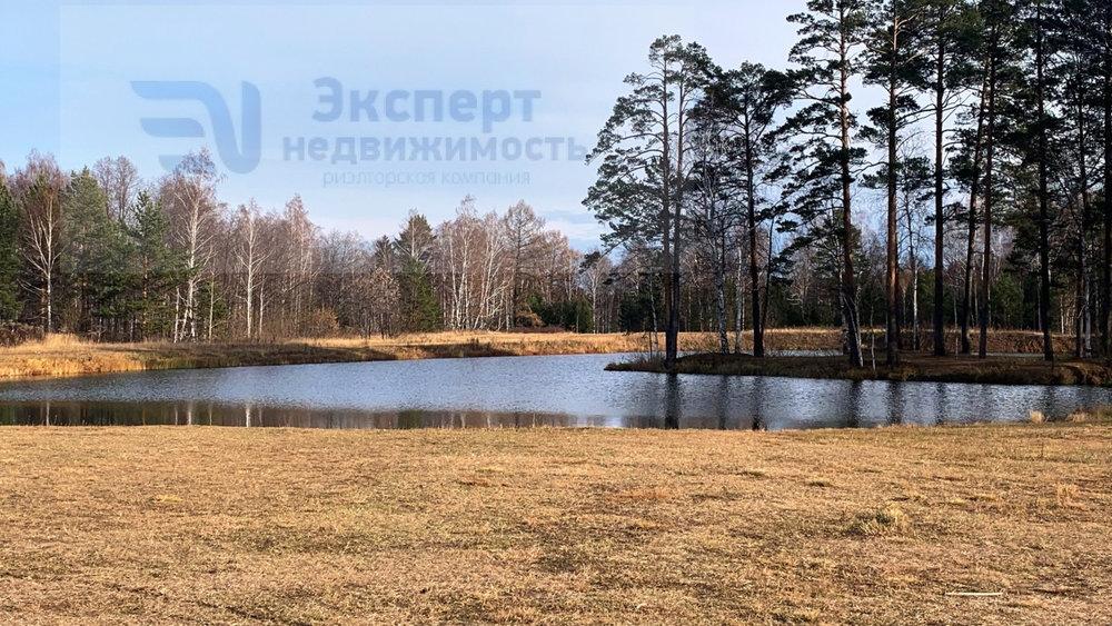 к.п. Шишкино, ул. Кедровая, 36 (городской округ Березовский) - фото земельного участка (6)