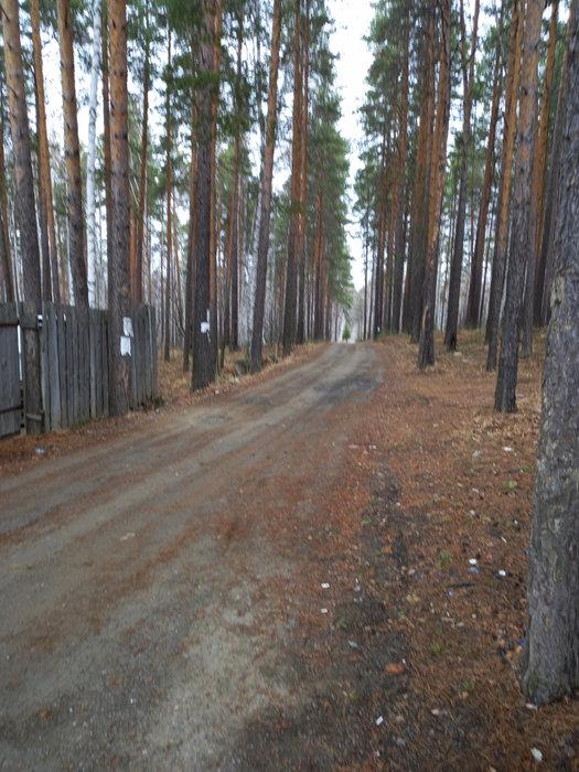 СТ Росинка, д.   (городской округ Первоуральск) - фото дачи (1)