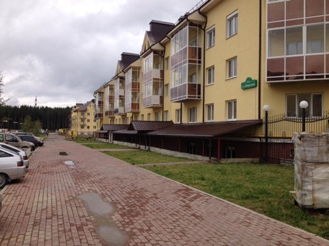 Екатеринбург, ул. Очеретина, 14 (Академический) - фото квартиры (1)