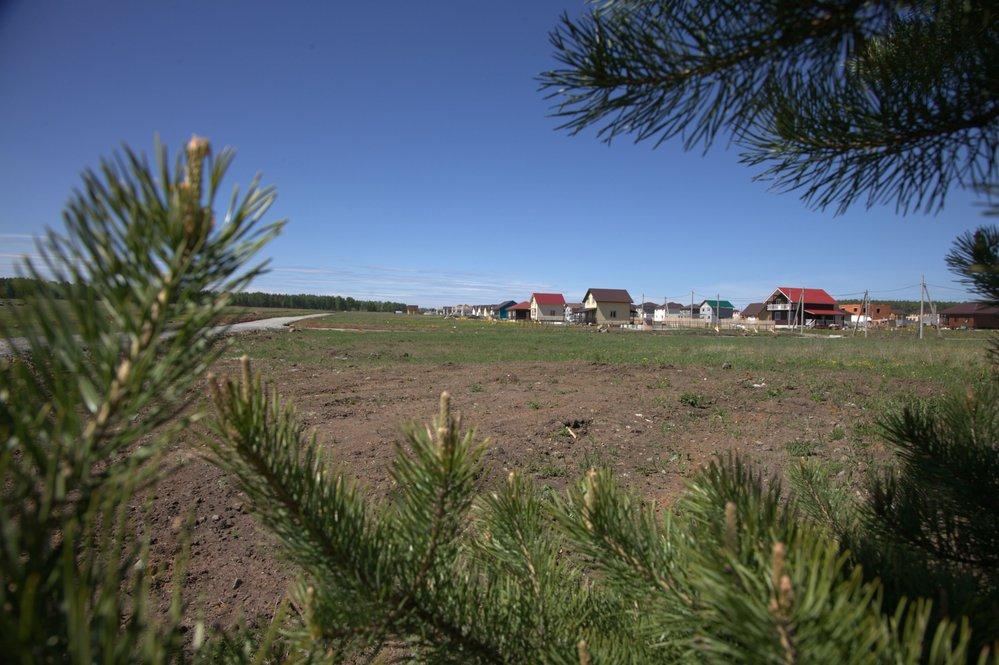 Коттеджный поселок Чистые росы - фото 3