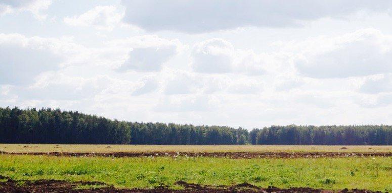 Коттеджный поселок Чистые росы 2 - фото 6