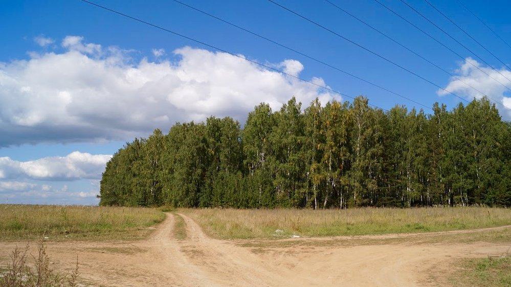 Коттеджный поселок Чистые росы 2 - фото 8
