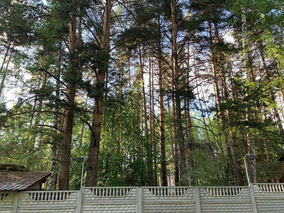 Коттеджный поселок Земляничная Поляна - фото 11