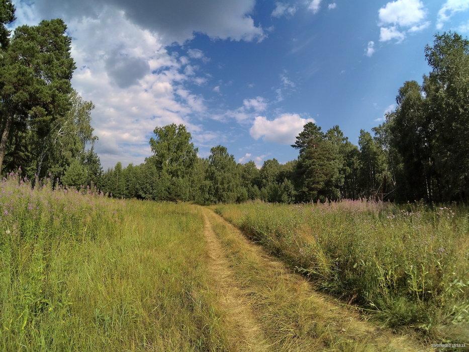 Коттеджный поселок Солнечная поляна - фото 6